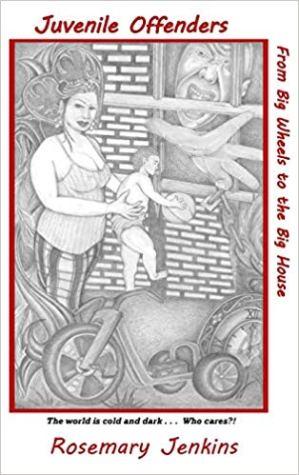 Juvenile Offender's HB cover